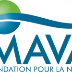 MAVA_logo_for_Office_NEW