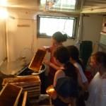 Megnéztük a pörgetést és megkóstoltuk a friss mézet