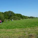 Természetismereti séta a Tócó-patak mentén (Fotó: Koczka András)
