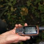 A kitermelésnél külön figyelmet érdemlő fák GPS koordinátáinak felvétele